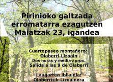 Descubriendo la Calzada Romana del Pirineo / Pirinioko Galtzada Erromatarra ezagutzen